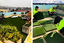De Boer Grass Tiles for Roof Tops from Solartex