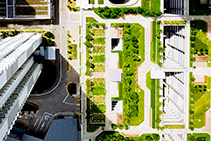 Green Roofs with Extruded Polystyrene by FOAMULAR