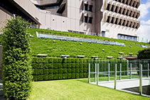 Vertical Gardens for Lady Cilento by Elmich