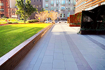 Public Area Landscaping for Block 11 by AYZ Landscapes