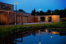 Pole Mounted Luminaires for Croxley Park by WE-EF