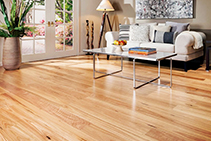 Blackbutt Engineered Flooring from Hazelwood & Hill