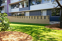 Sustainable Facade Cladding for Schools by Futurewood