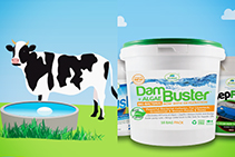Clean Water Sources with Dam Buster by Bio Natural Solutions