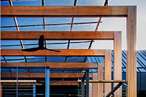 Structural Timber by Boral from Hazelwood & Hill