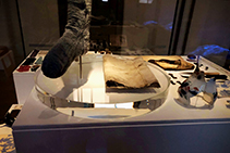 Custom Displays for Hyde Park Barracks Museum by Allplastics