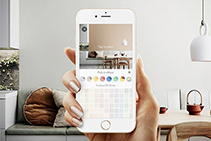 Visualise Paint Colours in Your Home with the Dulux Colour App