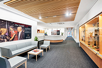 High-performance Acoustic Ceiling Panels from Screenwood