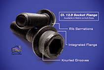 Class 12.9 Socket Flange Screws from The WDS Group