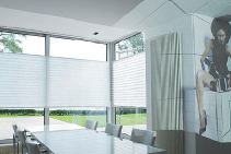 XL50 Custom Pleated Blinds from Blinds by Peter Meyer