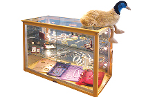 ICustom Retail Glass Display Cabinets from Artisan Products