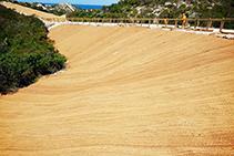 Sustainable Erosion Control & Revegetation with Polyfabrics