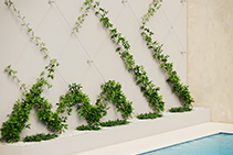 Stainless Steel Green Walls Simple to Install from Miami Stainless