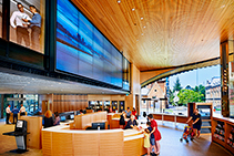 Acoustic Linear Timber for Health & Education from Screenwood