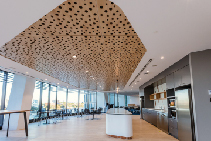 Bubble-Patterned Acoustic Ceiling Panels from SUPAWOOD