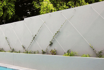 Green Wall Packages Easy to Order from Miami Stainless