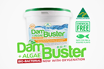 Natural Water Cleaning with Dam Buster by Bio Natural Solutions