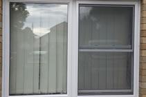 Wilkins Windows