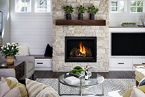 Contemporary Enclosed Gas Fireplaces - 6X from Jetmaster