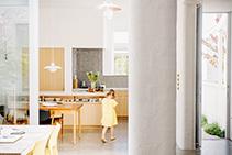 Silent Undermount Rangehood for Award Winning Home from Schweigen