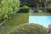 Always Green Artificial Grass for Homes from Eco Grass