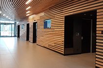 Tasmanian Oak Timber Office Acoustic Solutions from Atkar