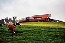 Bespoke Aluminium Solution for Northcliffe Dairy with Sapphire