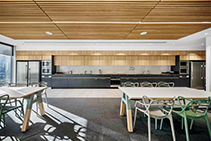 American White Oak Acoustic Ceiling Panels from Screenwood