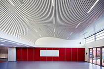 Continuous Linear Ceiling Feature Panels by Atkar