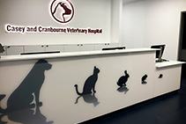 Printed Acrylic for Office Reception by Innovative Splashbacks