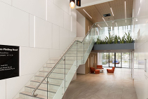 Decorative Slatted Feature Wall Panels Brisbane from SUPAWOOD