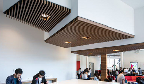 Achieve Modern Lines for Library Application with Atkar Timber Slats