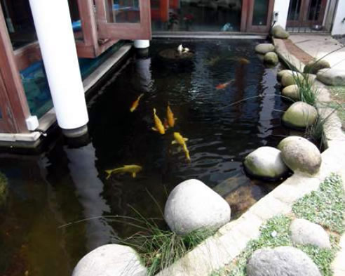 Radcon chosen for its eco friendly properties from for Ornamental fish pond filters