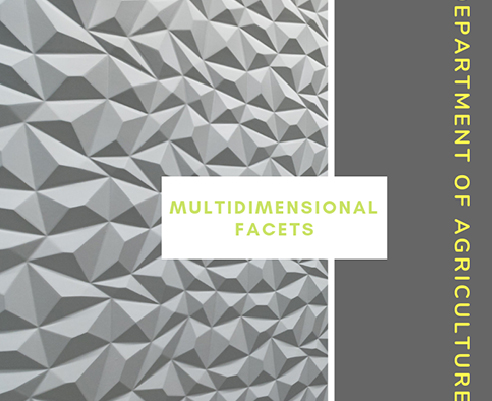 Multidimensional Facet Decorative Wall Panels from 3D Wall Panels
