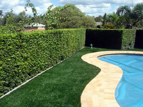 Synthetic Lawns From Enduroturf Salt And Chlorine Tolerant
