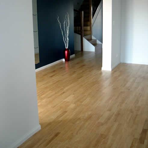 Wood Floor Solutions Timber Flooring Launch New Website