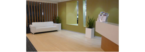 Light Coloured Bamboo Flooring From Eco Flooring Systems