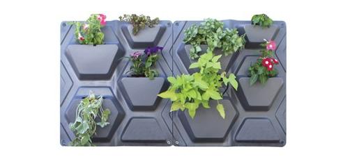 Plantscape Wall Planter Kits Maze Distribution Clayton