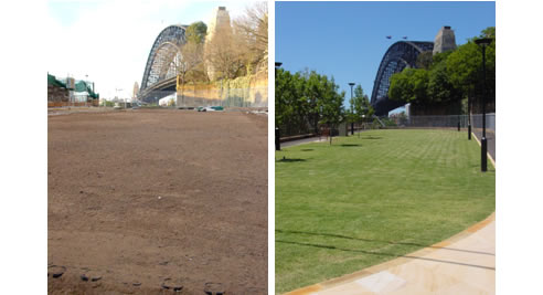 high traffic grass area stabilised with turfpave
