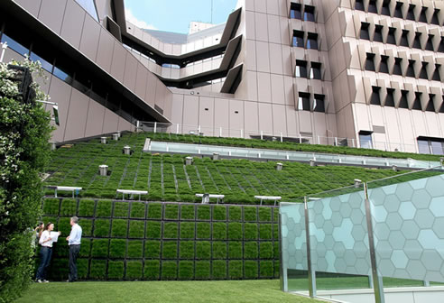 green sloping roof brisbane childrens hospital