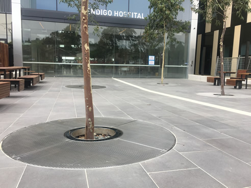 Bendigo Hospital Surface Water Management Systems