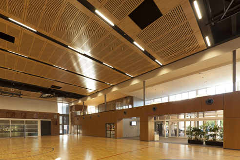 Acoustic Ceiling School Hall
