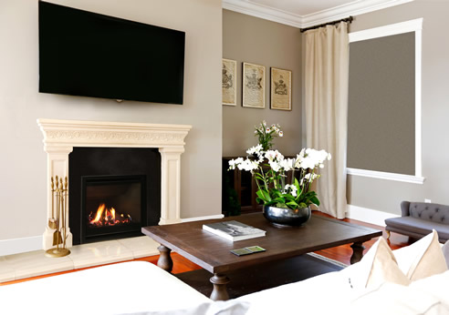 efficient gas insert fireplace escea fireplaces. Black Bedroom Furniture Sets. Home Design Ideas