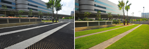 trafficable grass surface