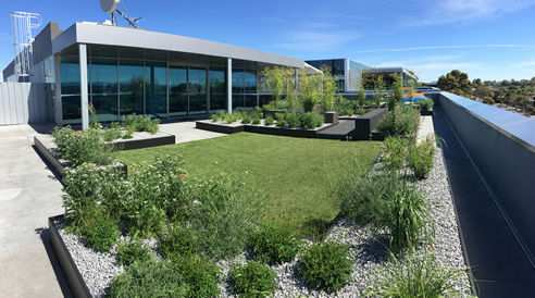 Biophilic Green Roof