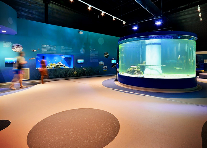 Step Safety Flooring for Dolphin Discovery Centre by Forbo