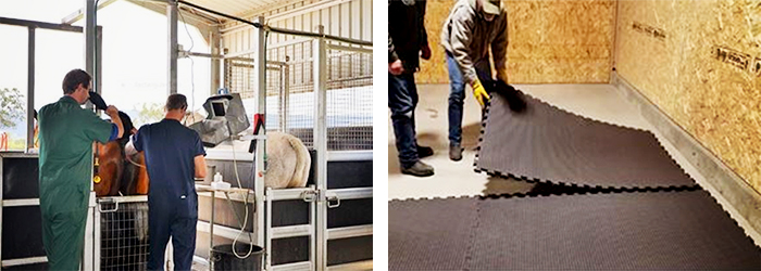 DIY Therapeutic Equine Stable Mats from Sherwood Enterprises