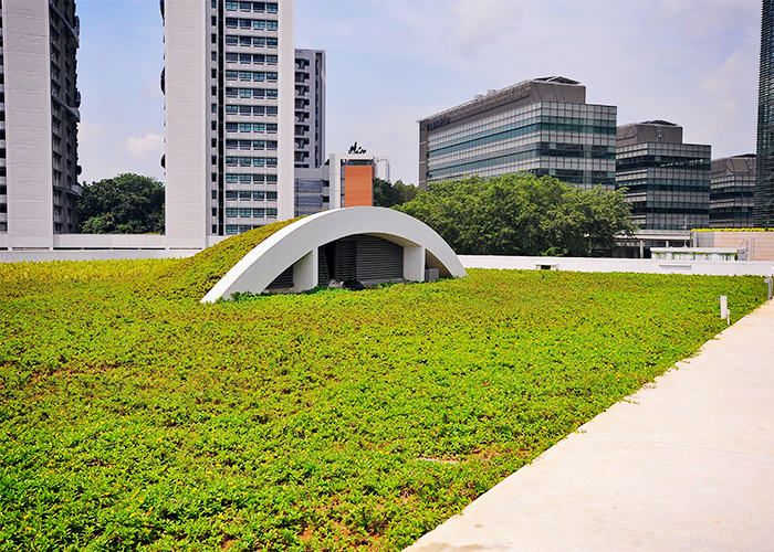 Green Roofs from Elmich