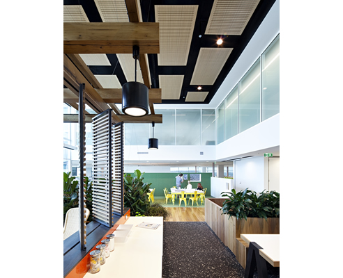timber finished slotted acoustic ceiling panels