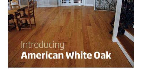 American White Oak Timber Flooring Mountain Timber